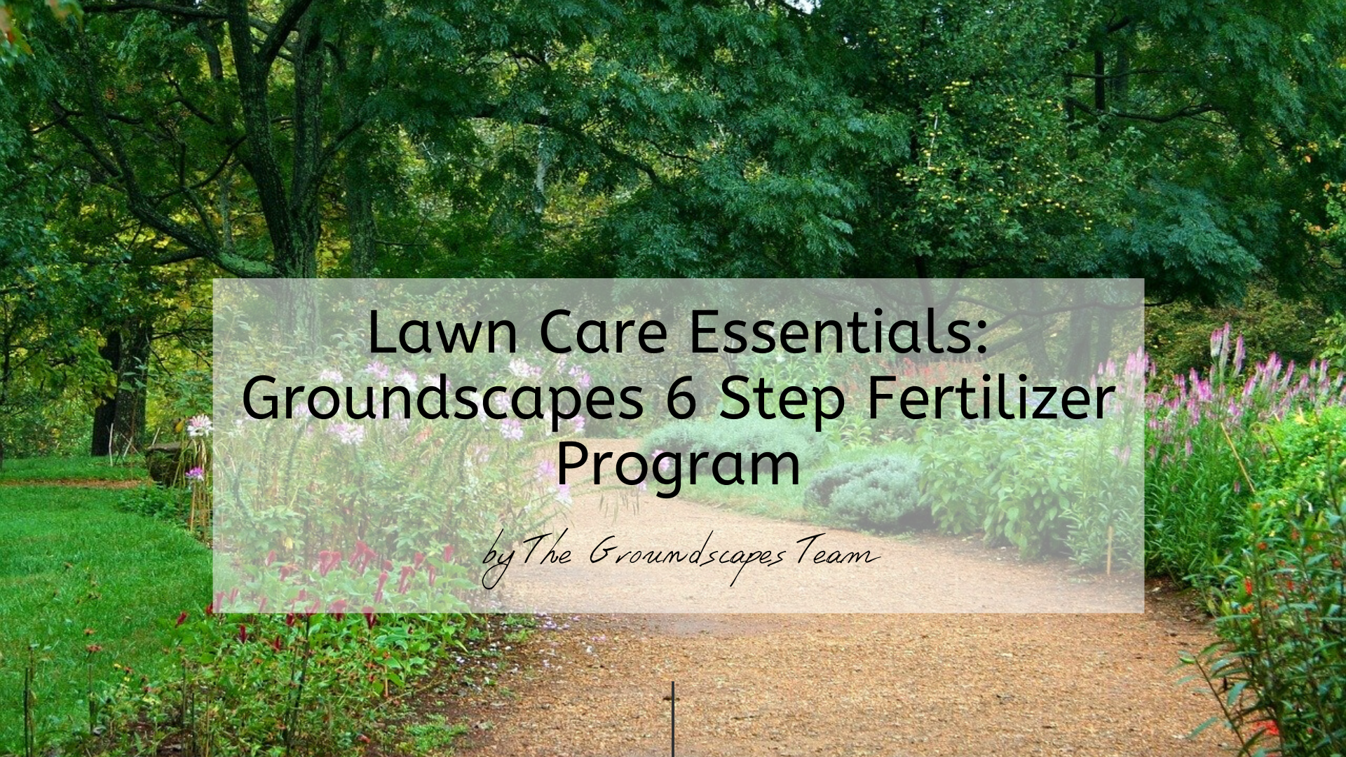 Lawn Care Essentials: Groundscapes 6 Step Fertilizer Program